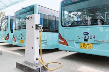 蚌埠今年将新增300台纯电动公交车 进一步推广绿色能源