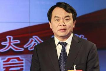 王抒祥:发展电动汽车需建设充换电网络