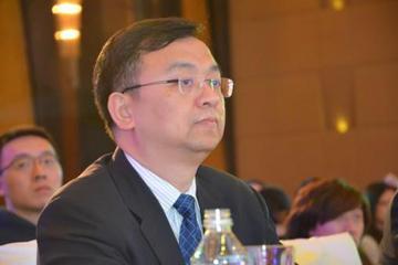 王传福:电动大巴补贴存在缺陷