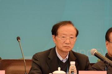陈清泰:电动车产业化初期存在市场失灵