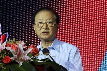 陈清泰:发挥协同效应 走出新能源汽车产业困境