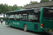 """杭州混动公交两年""""零推广"""" 是否进入谢幕阶段"""