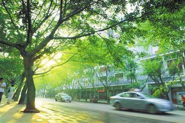 """西安对新能源汽车开设审验""""绿色通道"""""""
