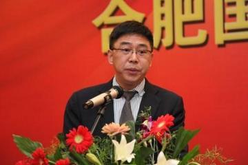合肥国轩高科动力能源股份公司董事长 李缜