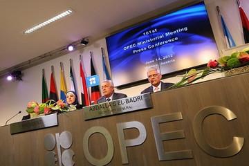 OPEC:汽油仍是主燃料 2040年新能源车份额仅6%