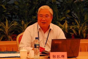 郭孔辉院士:微型电动车全国标准有望今年6月出台