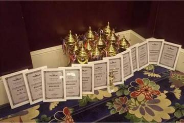 丽驰小型车测试大赛力揽10大奖项 十全十美