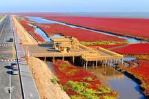 科技与自然完美结合!北汽无人驾驶汽车商用化项目落户盘锦红海滩