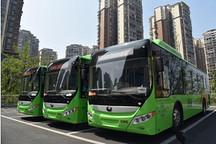 再增15辆新能源空调公交车 泸州推广总量达100辆
