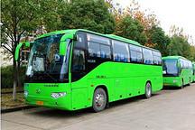 鼓励绿色出行 郑州新增350台纯电动公交车