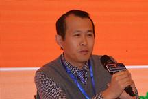 肖成伟:动力电池比能量350Wh/kg是目标,300Wh/kg是指标