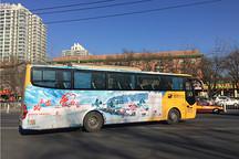 一路平安让爱回家,平安包下200台嗒嗒巴士送万名贫困人员免费回家