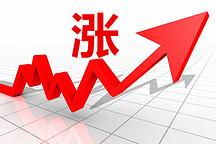 广州部分新能源车春节涨价 有车型涨幅超五成