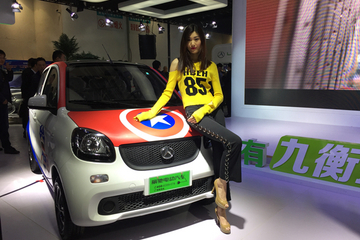 2017山东新能源汽车展开幕 微型电动车正创新升级