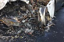 诡异!那些原因不明的特斯拉Model S起火事故