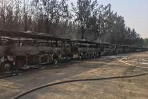杨柳絮燃烧致北京蟹岛电动大巴着火,北京市政府发布清理杨柳絮防止发生火灾紧急通知