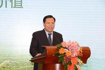 珠海银隆董事长魏银仓关于新能源车市场和政策的冷思考