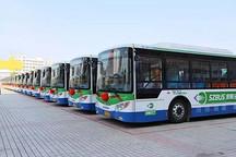 山东省青岛市今年计划再更新新能源公交车914辆