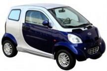 杭州市私人购买使用新能源汽车试点财政补助资金管理办法(试行)