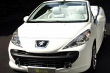 国产新车3月入市 DS用价格打动市场