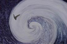 """特斯拉风暴与投资的""""蝴蝶效应"""""""