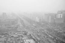 雾霾围城 新能源汽车将如何破题?