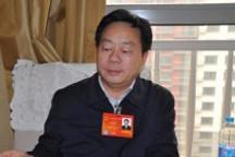 长沙市副市长何寄华:要破解推广新能源汽车的瓶颈