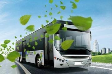 第312批新车公示:新能源客车119款,中车时代电动申报数第一