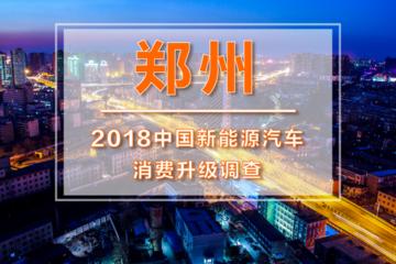 一电调查  看颜值不看里程的郑州市场:广阔天地,大有作为