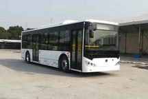 第320批新车公示:365款新能源商用车申报,上海申龙19款蝉联榜首;吉利商用车拔专用车头筹