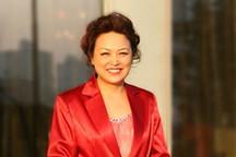 关注中国汽车产业未来发展,全国人大代表、长城汽车总裁王凤英的五项提案