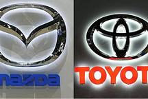 一个想要印度市场,一个想要电动技术,丰田、铃木结成联盟