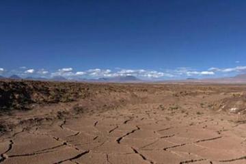 拯救地球之前,电动汽车先杀死了这片沙漠
