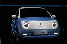 补贴后售价6.18万元起售的欧拉R1能否成功占领目前微型车市场