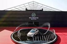 威马汽车年产15GWh动力电池项目开工