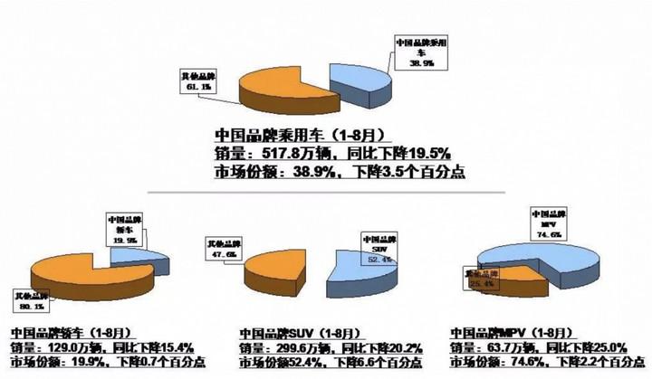 中国品牌车销售情况.jpg
