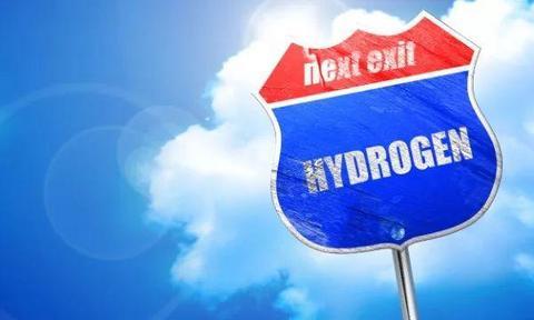 氢能迈入快速发展战略机遇期!当前市场突破口在哪?车企如何发力?这场研讨会给出答案