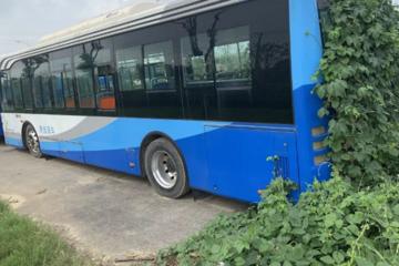 镇江20辆新能源公交被废弃野外,补贴100万的车已长草