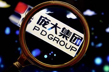 庞大集团成立品牌、园区管理、商用车三大事业部