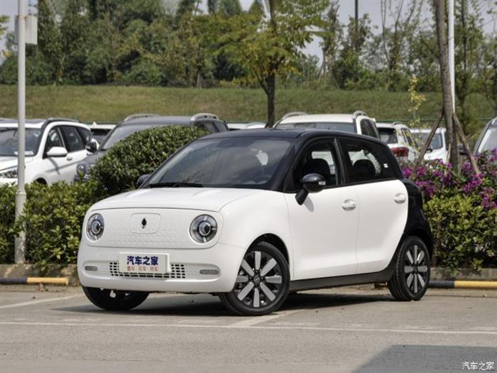 新车,<a class='link' href='http://car.d1ev.com/audi-series-725/' target='_blank'>欧拉R1</a>