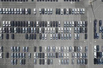 """1月销量同比腰斩,新能源汽车遭遇""""至暗开局"""""""