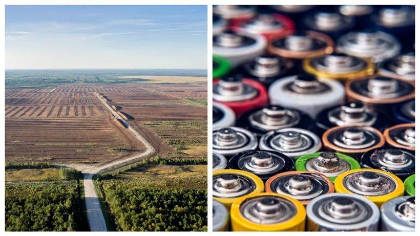 前瞻技术,爱沙尼亚塔尔图大学,钠离子电池,沼泽泥炭
