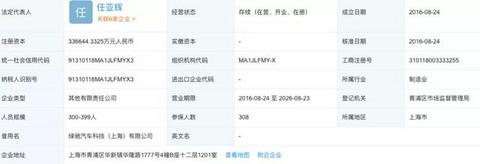 河南国投成绿驰汽车最大股东