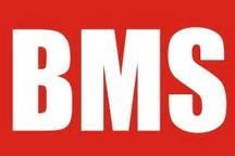 """BMS企业如""""雨后春笋"""",谁能""""长大成林"""""""