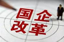 徐留平建言国企按市场规律运营 一汽改革能成央改蓝本
