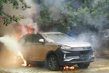 EV晨报 | 比亚迪新能源车7月销量首超燃油车;威马回应EX5自燃;特斯拉放弃私有化