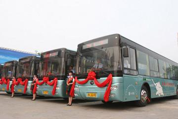 交通部公布首批营运客车安全达标车型,宇通/厦门金龙5款纯电动客车入选