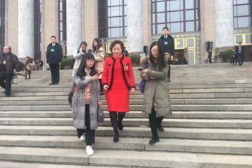 中能国电王一莉两会提案:建议国家建立动力电池回收体系与准入机制