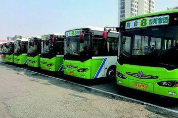 辽宁葫芦岛投入2000多万,购买100余台新能源公交车