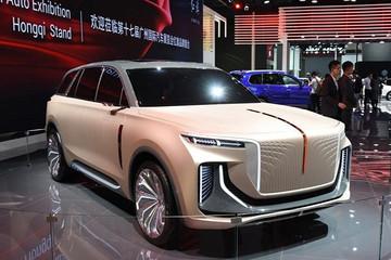 增加产品投放 中国品牌2020年展望